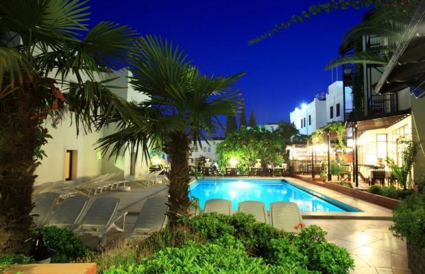 фото отеля Paloma изображение №17