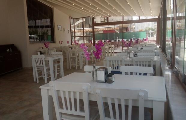 фотографии отеля Mood Beach Hotel (ex. Duman) изображение №35