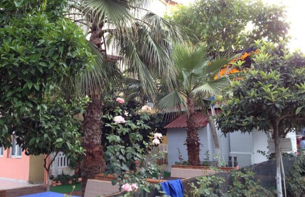 фотографии отеля Hotel Marin изображение №3