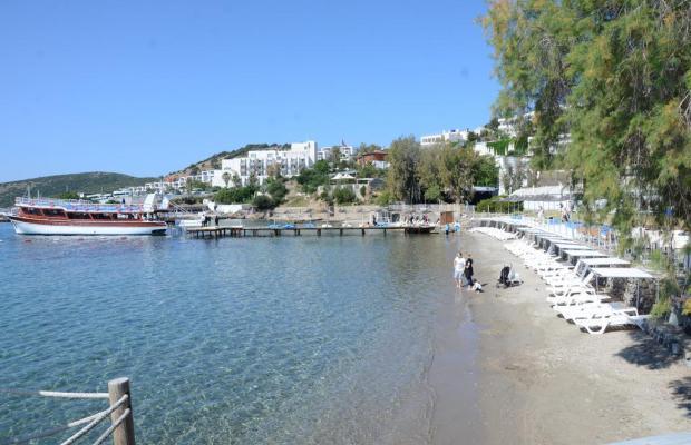 фотографии Rexene Resort (ex. Barcello Rexene Resort) изображение №32