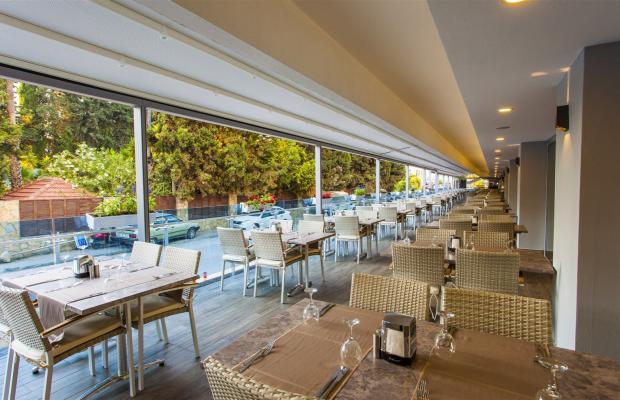 фотографии отеля Avena Resort & SPA (ex. Gold Safran) изображение №35