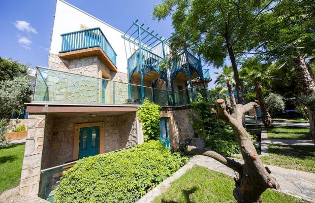 фотографии отеля Jasmin Beach Hotel изображение №147