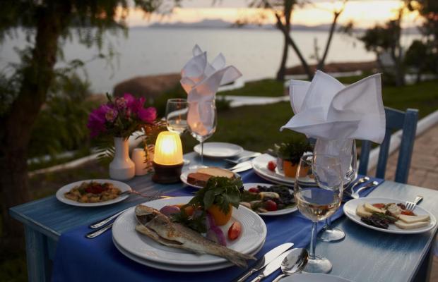 фотографии отеля Bodrum Holiday Resort & Spa (ex. Majesty Club Hotel Belizia) изображение №23