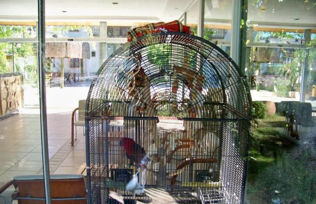 фото отеля Club Turkuaz Garden изображение №17