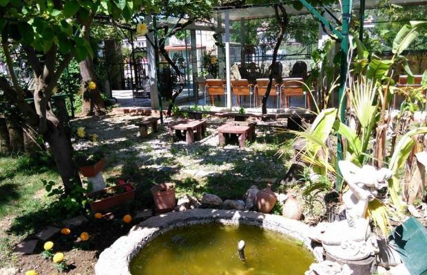 фото отеля Club Turkuaz Garden изображение №9