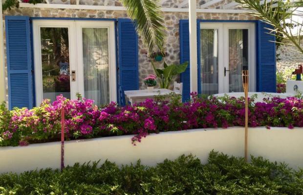 фото отеля Flamingo изображение №37