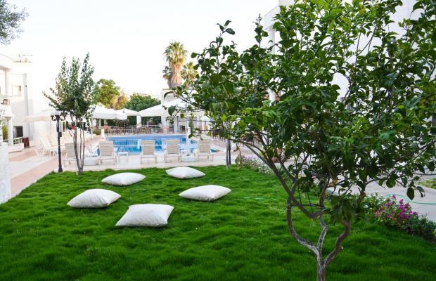 фотографии Costa Bodrum Maya Hotel (ex. Club Hedi Maya) изображение №28