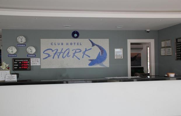 фотографии отеля Club Shark Hotel изображение №11