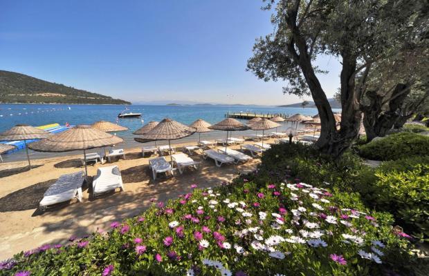фотографии отеля Izer Hotel & Beach Club изображение №15