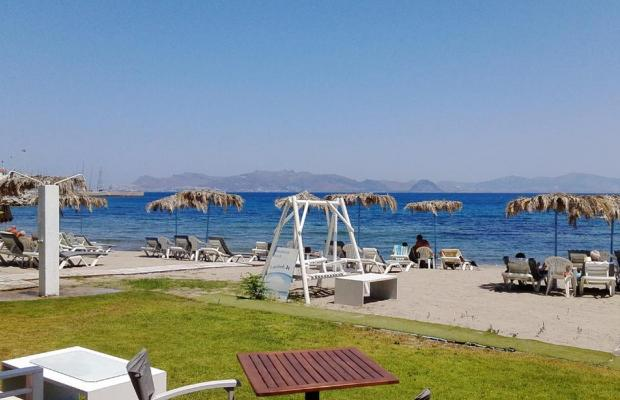 фото Theodorou Beach Hotel изображение №2
