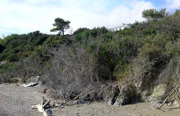 фотографии Eden Beach Apartments изображение №8