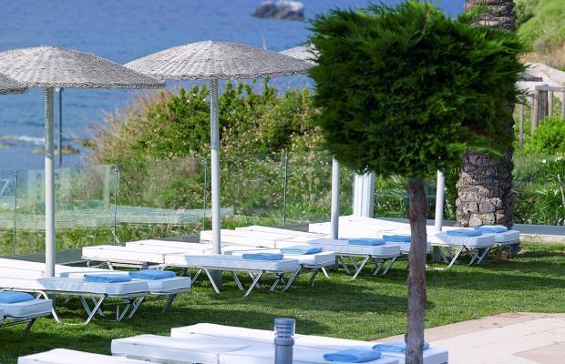 фотографии отеля Dimitra Beach Resort изображение №55