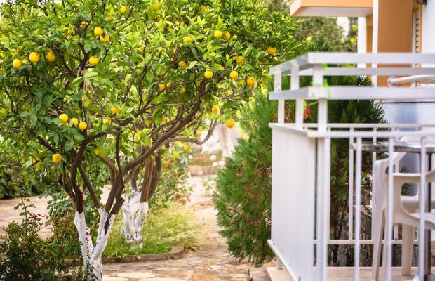 фотографии Paradise Primavera Apartments изображение №8