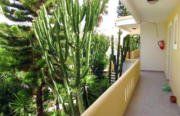 фото отеля Afentoulis Studios изображение №5