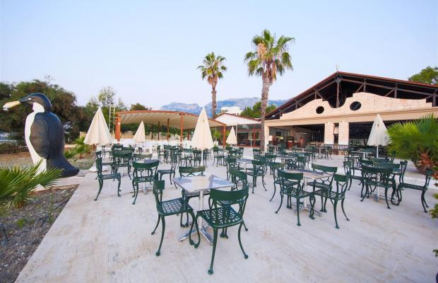фотографии отеля Diamonds Club Kemer (ех. Royal Palm Resort; Royal Resort) изображение №31