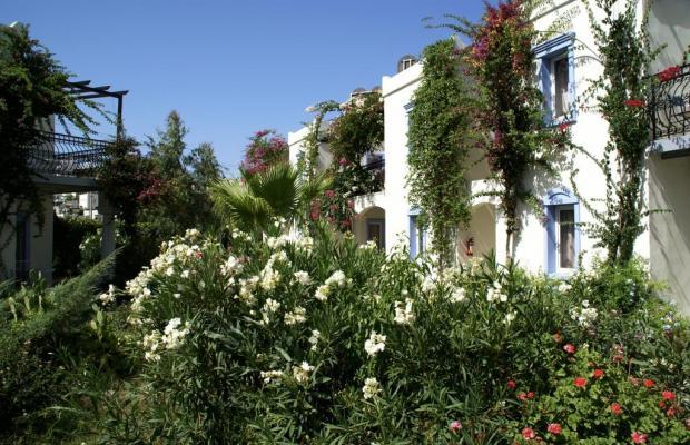 фотографии отеля Club Paloma Apartments изображение №19