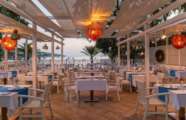 фотографии отеля Voyage Turkbuku изображение №31