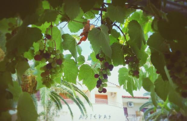 фото отеля Asteras Hotel изображение №13