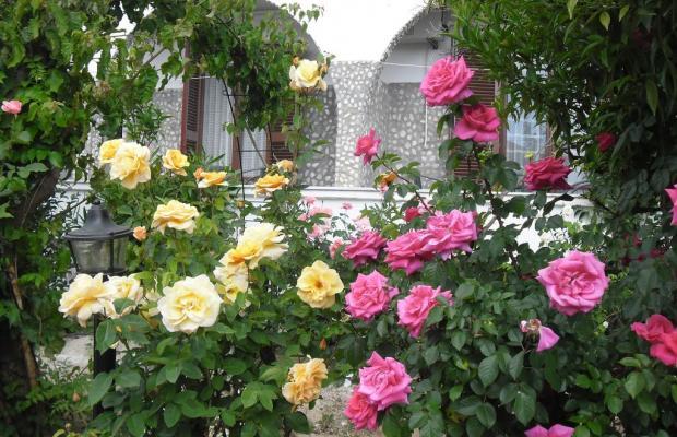 фото отеля Villa Maria изображение №37
