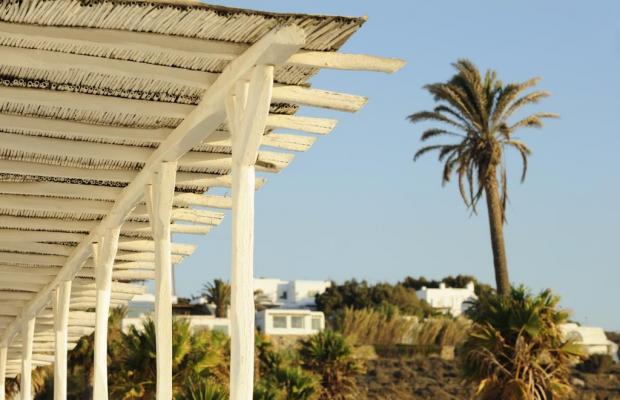 фотографии отеля Mykonos Beach Hotel (ex. Apartments By The Beach In Mykonos) изображение №23