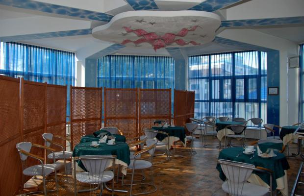 фото отеля Морская Звезда (Starfish) изображение №13