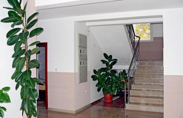 фото Villa Goran Zec изображение №6