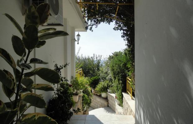 фото отеля Sun Rose Apart (ex. Villa Hara)  изображение №13