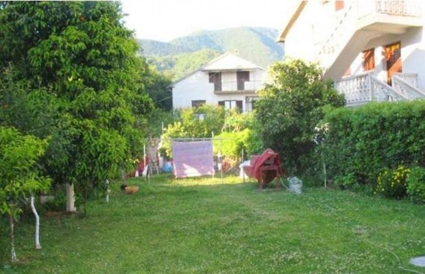 фото Villa Momo изображение №14
