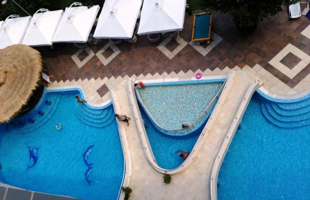 фотографии отеля Flamingo (Фламинго) изображение №7