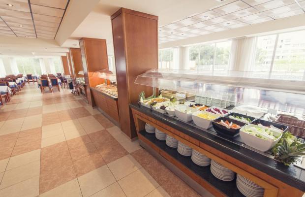 фотографии AzuLine Hotel Bahamas (ex. Vincci Bahamas) изображение №28