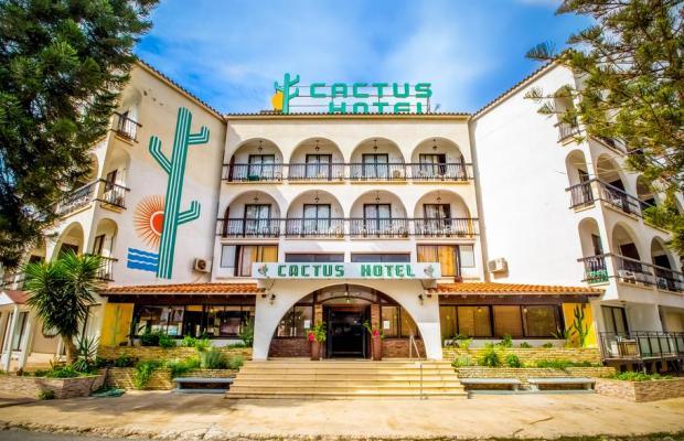 фотографии Cactus изображение №16