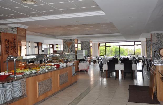 фотографии отеля Cala Ferrera (ex. Gavimar Cala Ferrera) изображение №11