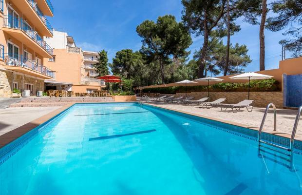 фотографии отеля Costa Mediterraneo изображение №35