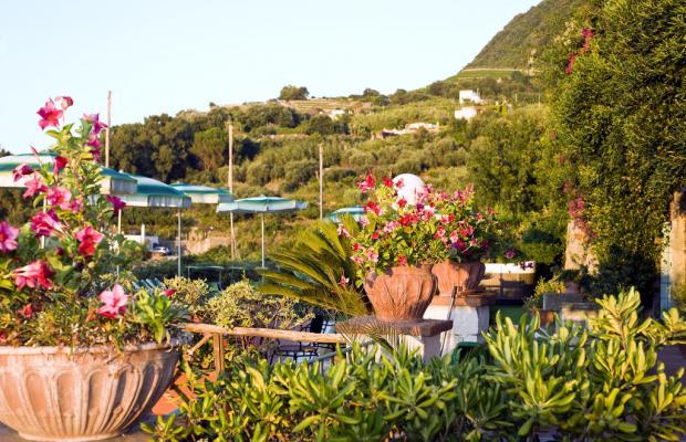 фотографии отеля Poggio del Sole изображение №35