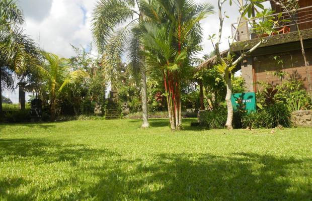 фотографии Villa Prana Shanti изображение №24