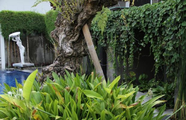 фотографии Annora Bali изображение №28
