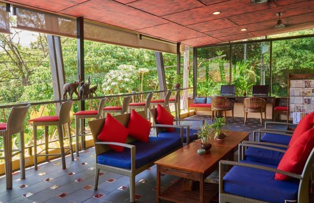 фотографии отеля CC's Hideaway Hotel (ex. CC Bloom) изображение №55