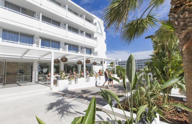 фото отеля Anfora Playa изображение №37