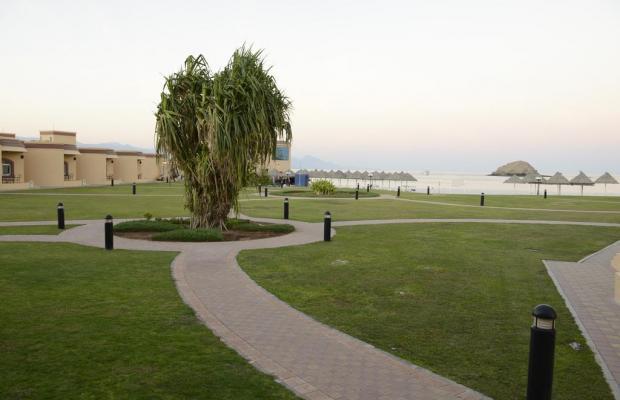 фотографии Royal Beach Hotel & Resort изображение №4