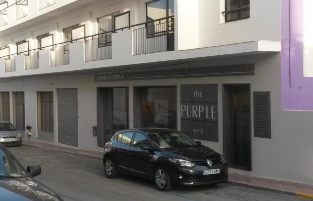 фото The Purple by Ibiza Feeling изображение №10