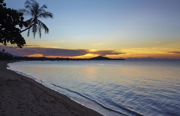 фотографии Paradise Beach Resort (ex. Best Western Premier Paradise Beach Resort) изображение №16