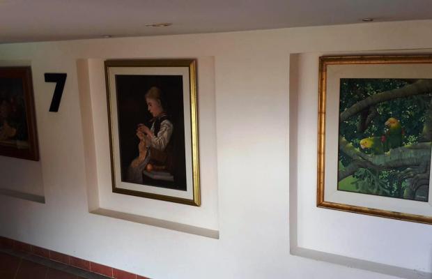 фотографии Naris Art Hotel изображение №16