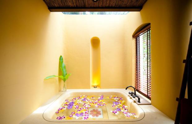 фотографии отеля Paradee Resort изображение №23