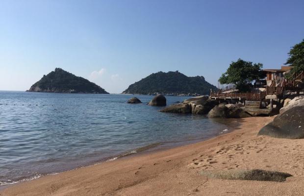 фотографии Dusit Buncha Resort изображение №20