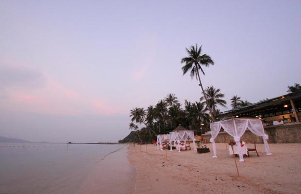 фото отеля Mimosa Resort & Spa изображение №9