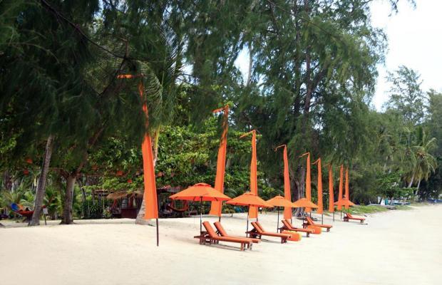 фотографии Viva Vacation Resort изображение №16