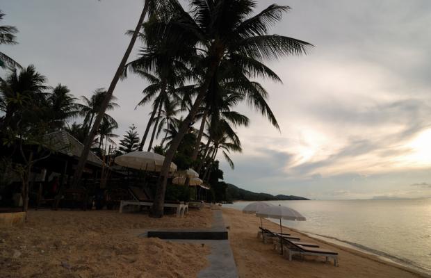 фотографии отеля Koh Samui Resort изображение №11