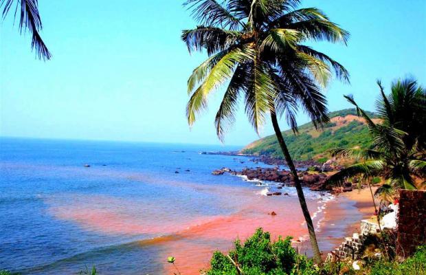 фотографии Poonam Village Resort изображение №16