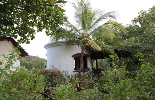 фото отеля Jivana Plantation (ex. Yab Yum @ Jivana Plantation) изображение №21