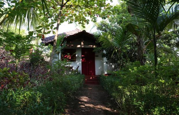фото Jivana Plantation (ex. Yab Yum @ Jivana Plantation) изображение №18